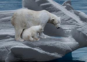 Klimawandel — Mythen und Fakten ...